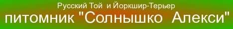 питомник Солнышко Алекси-1